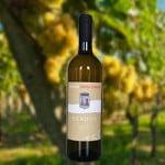 sabhos-latium.white-wine